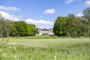 Sommarbild vy från hagen upp mot Slottet
