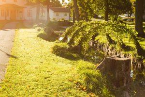 Vallonhuset och ån utanför med blomsterbågar